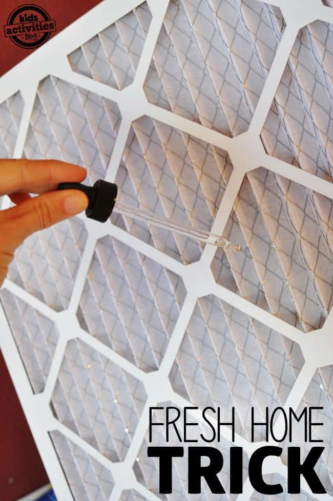 essential oils on air filter