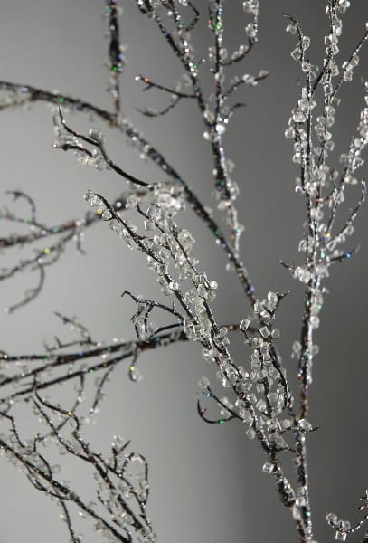 Iced branches for holiday DIY decoration #DIYDecorations #HomeDecor