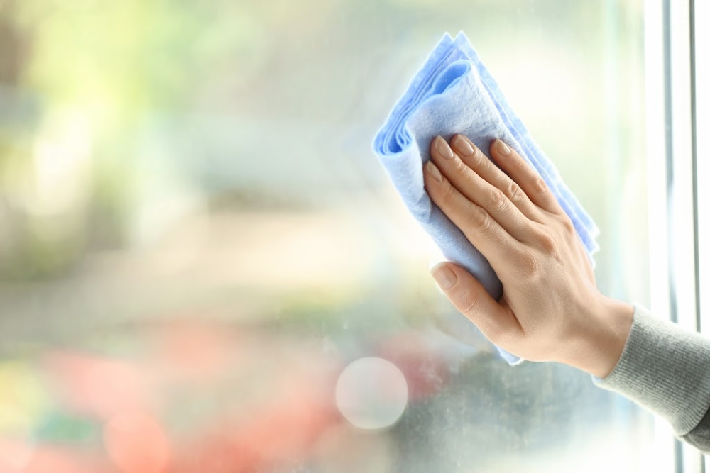 DIY Window Cleaner with Dish Soap will get your windows clean like this clean window.