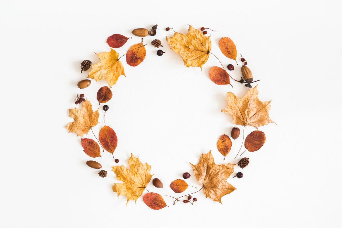 fall wreath hero