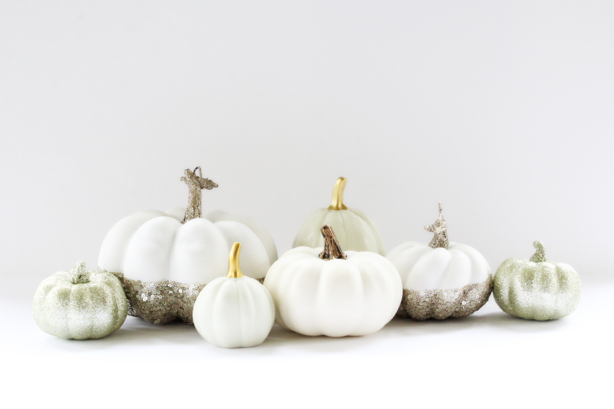 white pumpkin feature